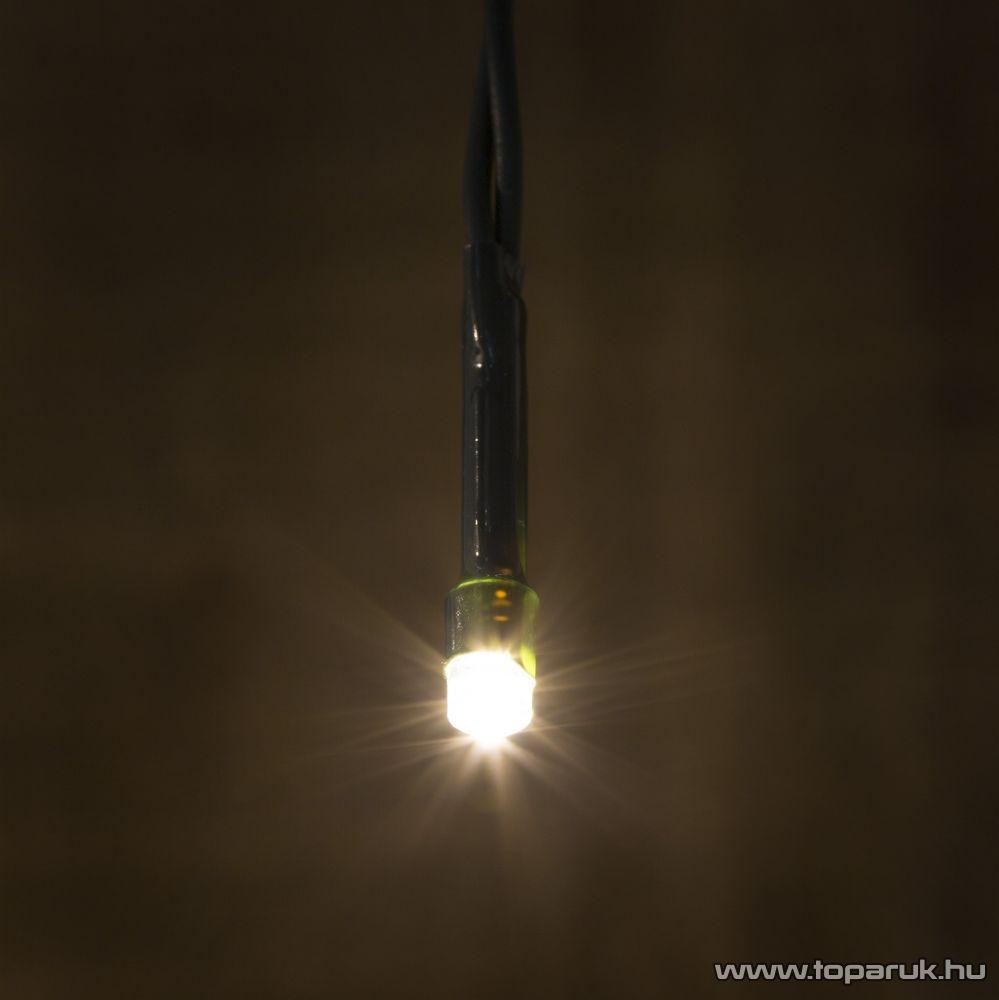 TA-Brand LKE 100/WW Kültéri LED-es fényfüzér, 12 m hosszú, 100 db meleg fehér fényű LED-del, állófényű