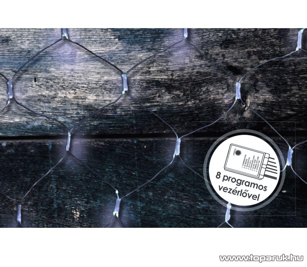 Design Dekor KDL 147 Kültéri LED-es fényháló, 200 x 100 cm, átlátszó kábellel, hideg fehér
