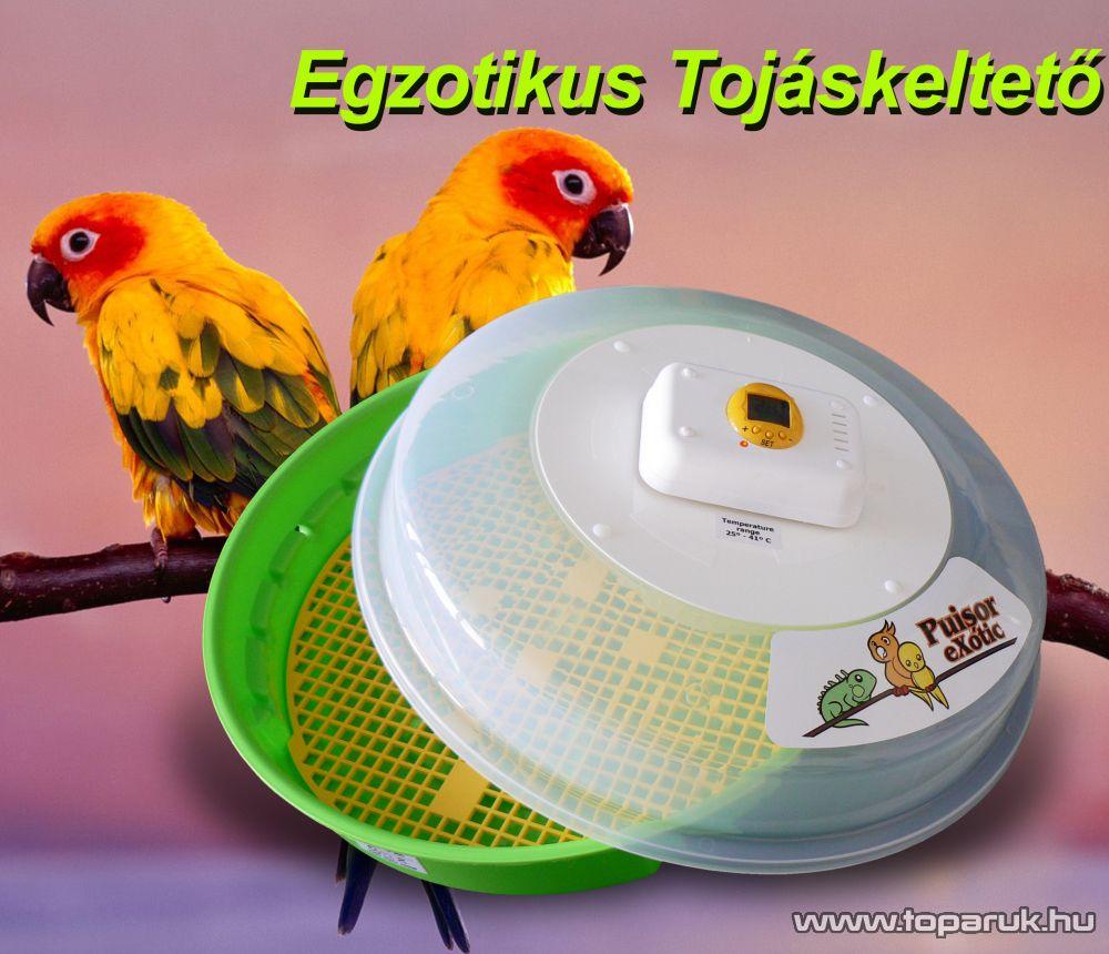 Hanson IO-200 Egzotikus tojáskeltető - készlethiány