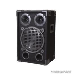 SAL PA 08 PASSZÍV Zenekari hangdoboz, 150 W