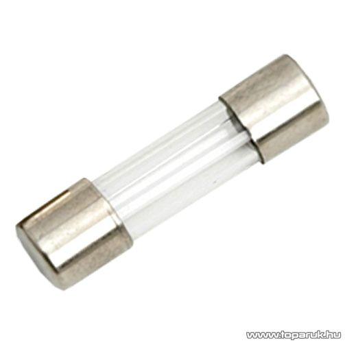 Gyors biztosíték, 5 x 20 mm, 5 A, 10 db / csomag (05279)
