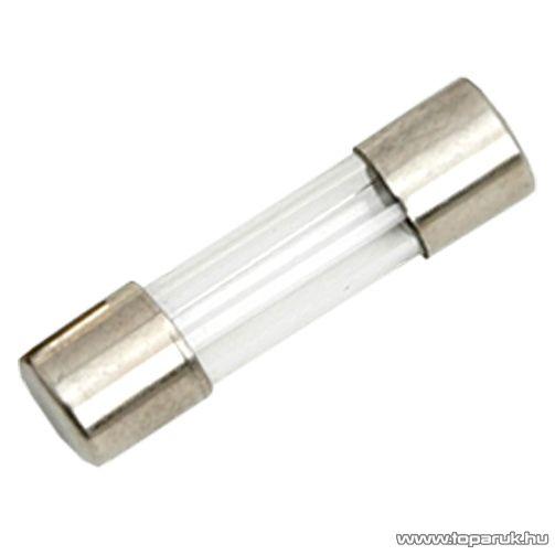 Gyors biztosíték, 5 x 20 mm, 3,15 A, 10 db / csomag (05274) - készlethiány